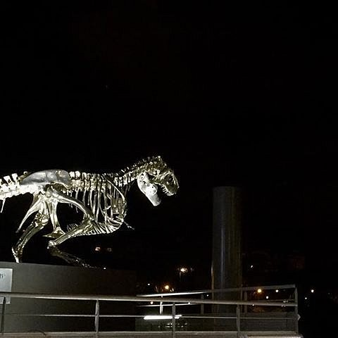 Jurassic Park might be real after all #paris #tyrannosaurus #philippepasqua