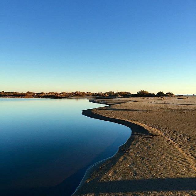 Near the sea #legrauduroi #espiguetteplage