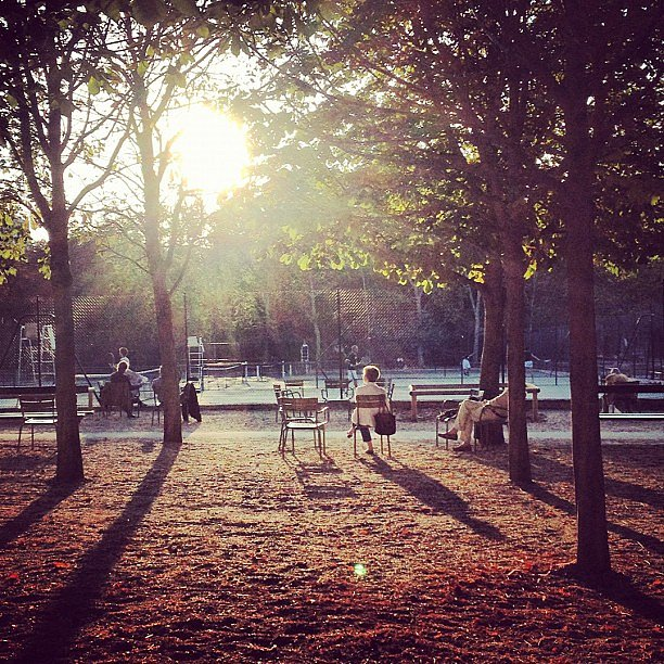 End of the day in Paris #sun #paris #jardinduluxembourg
